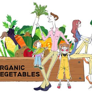 有機栽培の家庭菜園を楽しむ家族のイラスト_イラストレーターAkihisaSawada