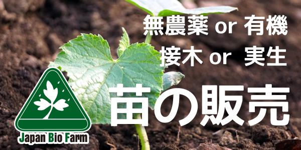 有機栽培の苗・無農薬栽培の苗の販売